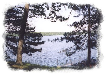 View of the Chippewa Flowage