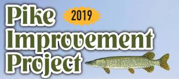 """Why Harvest Pike? Everything you need to know about the """"Pike Improvement Project"""""""